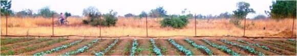 image10_site-dimplantation-et-dexploitation
